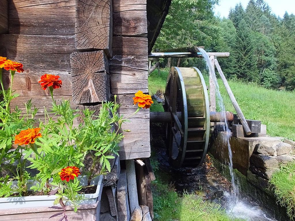 Hornschmied Mühle Miesenbach - Fasten in der Natur